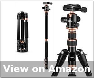 best tripod for heavy lenses reviews