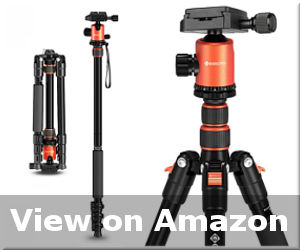 best tripod for macro photography