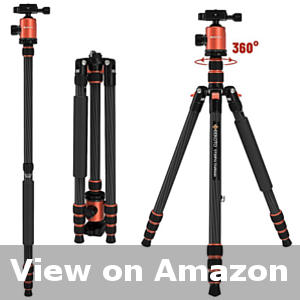 camera tripod for hunting